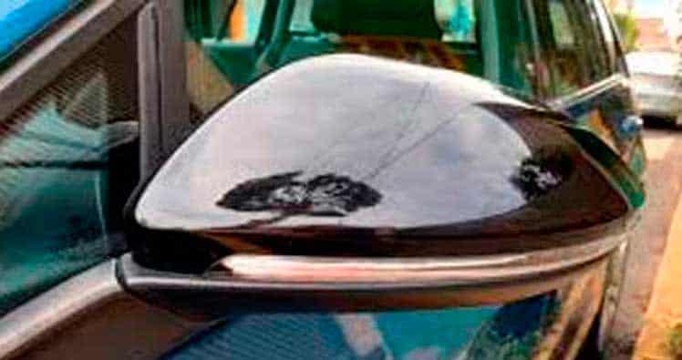 Pintar espejo retrovisor